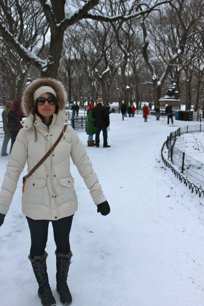 central park nyc snow