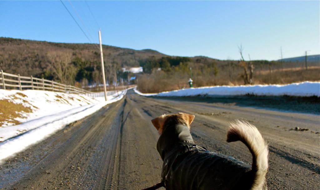 ice glen road great barrington ma