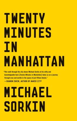 twenty minutes in manhattan book