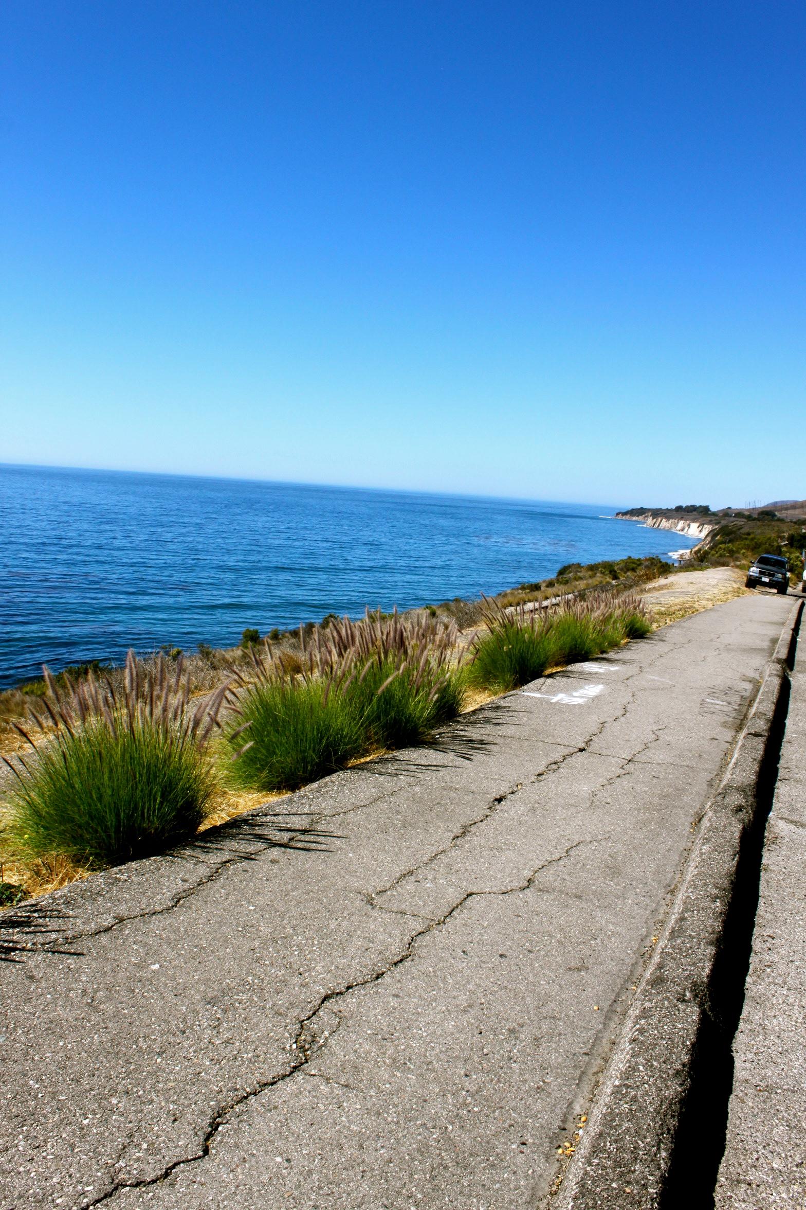 rincon beach california