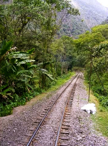 peru hiram bingham train machu picchu
