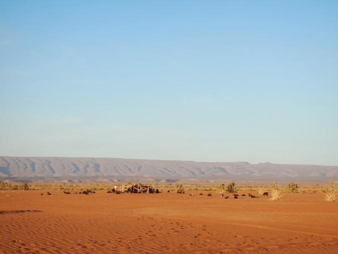 morocco sahara nomad erg chigaga