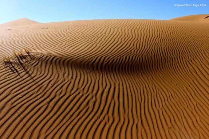 morocco sahara desert sand