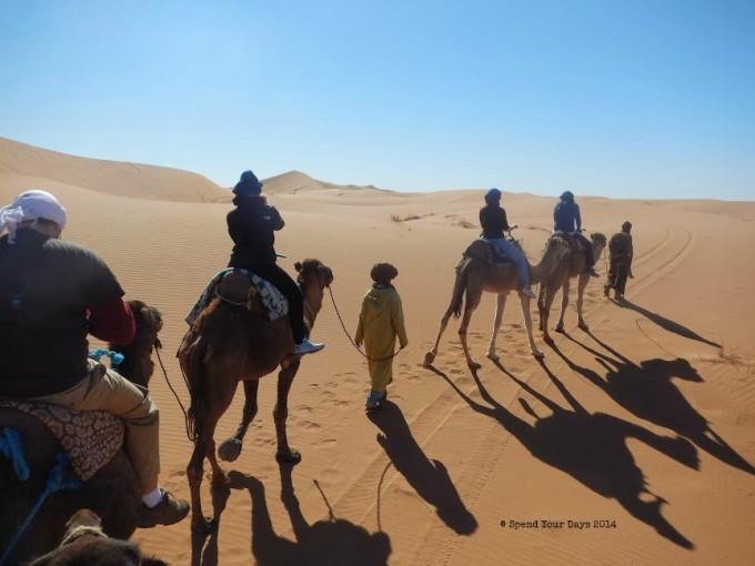 morocco sahara desert camel ride