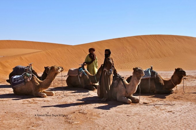 morocco sahara desert camel