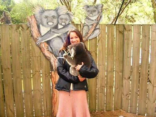 koala australia adelaide