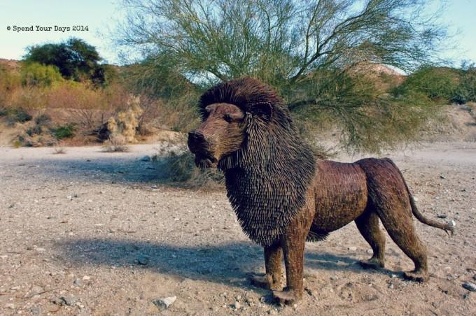 living desert palm desert california lion
