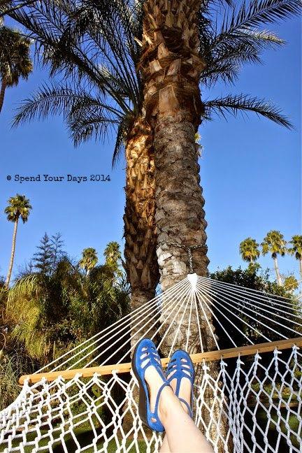parker palm springs hammock california