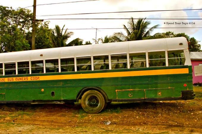 belize bus public transportation