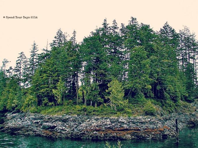 vancouver island telegraph cove