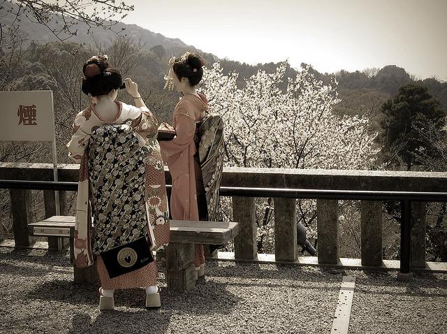 blossom geisha japan